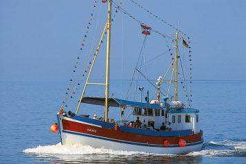 Fangfahrt in See mit MS Hauke